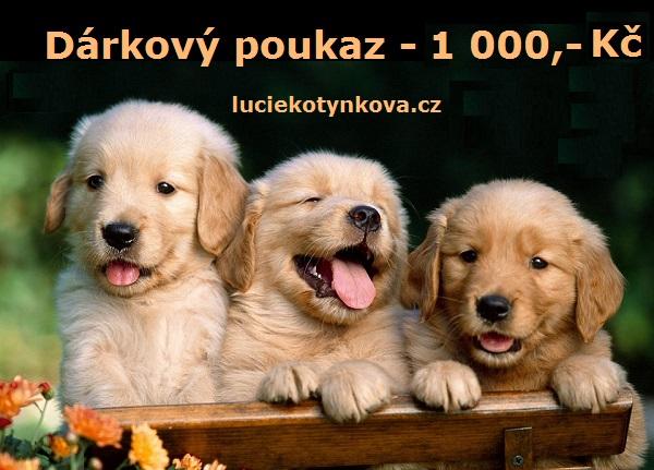 darkovy-poukaz-1-000