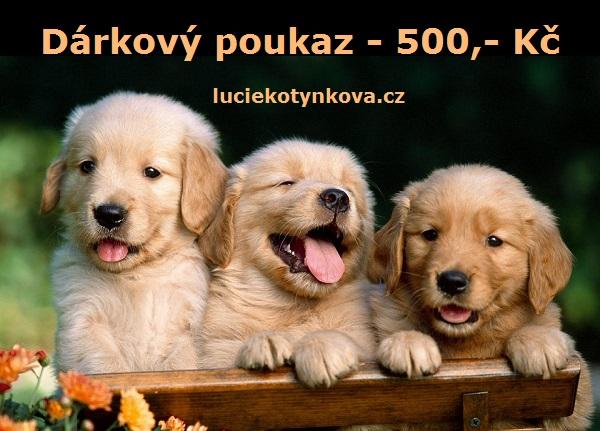 darkovy-poukaz-500