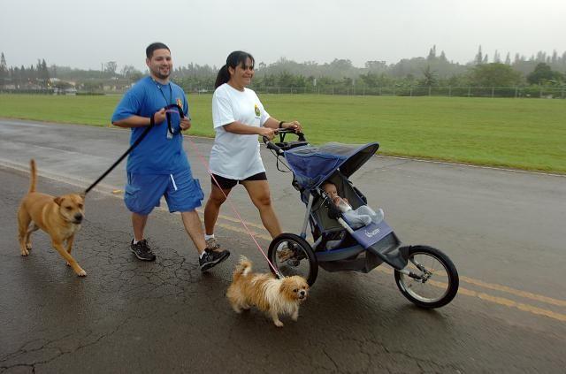 Setkání psa a dítěte v kočárku